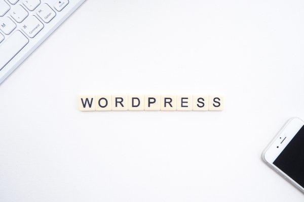 3 Vital Reasons to Update Your WordPress Website and Plugins